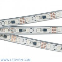 Лента SPI-5000P-AM 12V White6000 (5060, 60 LED/m, x3)